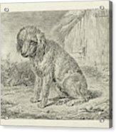 Sitting Dog In A Barn, Johannes Mock Acrylic Print