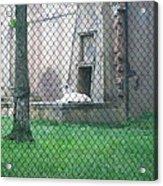 Six Flags Great Adventure - Animal Park - 121275 Acrylic Print