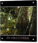 Six Mile Cypress Fort Myers Florida Acrylic Print