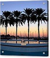 Six Palms Acrylic Print