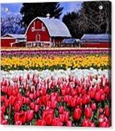 Skagit Valley Acrylic Print