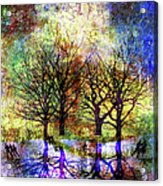 Skating In The Park Acrylic Print