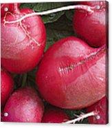 Skc 4682 Red Radish Acrylic Print