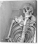 Skeleton  Acrylic Print