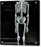 Skeleton New York City Acrylic Print