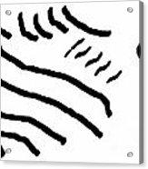 Sketch 2 Acrylic Print