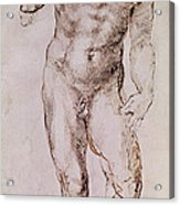Sketch Of David With His Sling Acrylic Print by Michelangelo Buonarroti