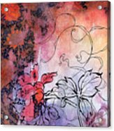 Sketchflowers - Calendula Acrylic Print