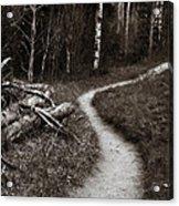 Skinny Trails Acrylic Print