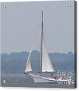 Skipjack On The Bay  Acrylic Print by Debbie Nester
