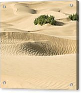 Skn 1408 The Smooth Dunes Acrylic Print