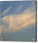 Skc 0346 Floating With Freedom Acrylic Print