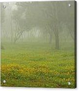 Skc 0835 Romance In The Meadows Acrylic Print