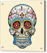 Skull 10 Acrylic Print