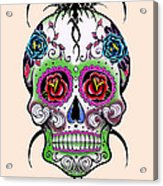 Skull 11 Acrylic Print