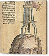 Skull Operation, 1517 Acrylic Print