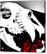 Skull Rose Acrylic Print