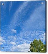 Sky Blue Summer Art Acrylic Print