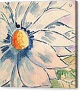 Sky Lillie Acrylic Print