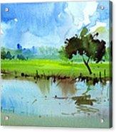 Sky N Farmland Acrylic Print