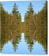 Sky Pines II Acrylic Print