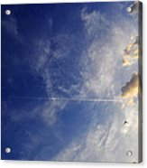 Sky Plane Bird From The Series The Imprint Of Man In Nature Acrylic Print