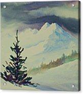Sky Shadows And Spruce Acrylic Print