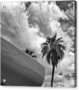Sky-ward Palm Springs Acrylic Print by William Dey