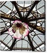 Skylight Blossom Acrylic Print