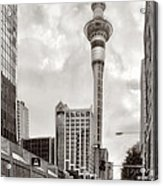 Sky Tower's Queen St Couple.nz Acrylic Print