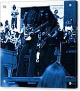 Skynyrd #5 Crop 1 In Blue Acrylic Print