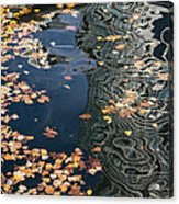 Skyscrapers' Reflections And Fallen Autumn Leaves Acrylic Print