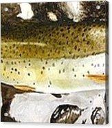 Slab On The Rocks Acrylic Print