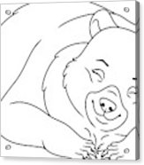 Sleeping Bear Coloring Page Wood Print By Platinka