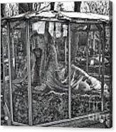 Sleeping Beauty's Night Mare Acrylic Print