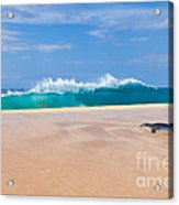 Sleeping Monk Seal At Papohaku Beach In Molokai Hawaii  Acrylic Print