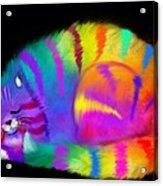 Sleepy Colorful Cat Acrylic Print