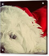 Sleepy Santa Acrylic Print