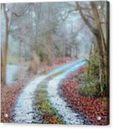 Slippery Travels Acrylic Print
