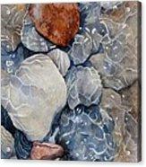 Slippery When Wet Acrylic Print by Bobbi Price