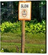Slow No Wake Acrylic Print