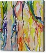 Slumber Acrylic Print