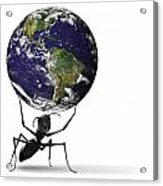Small Ant Lifting Heavy Blue Earth Acrylic Print