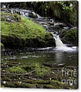 Small Falls On West Beaver Creek Acrylic Print