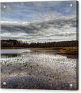 Small Lake Scene Acrylic Print