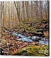 Small Pennsylvania Creek In Autumn Acrylic Print