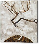 Small Tree In Late Autumn Acrylic Print