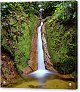 Small Waterfall In Tropical Rain Forest Acrylic Print