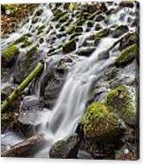 Small Waterfalls In Marlay Park Acrylic Print