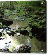 Smallin Creek Acrylic Print